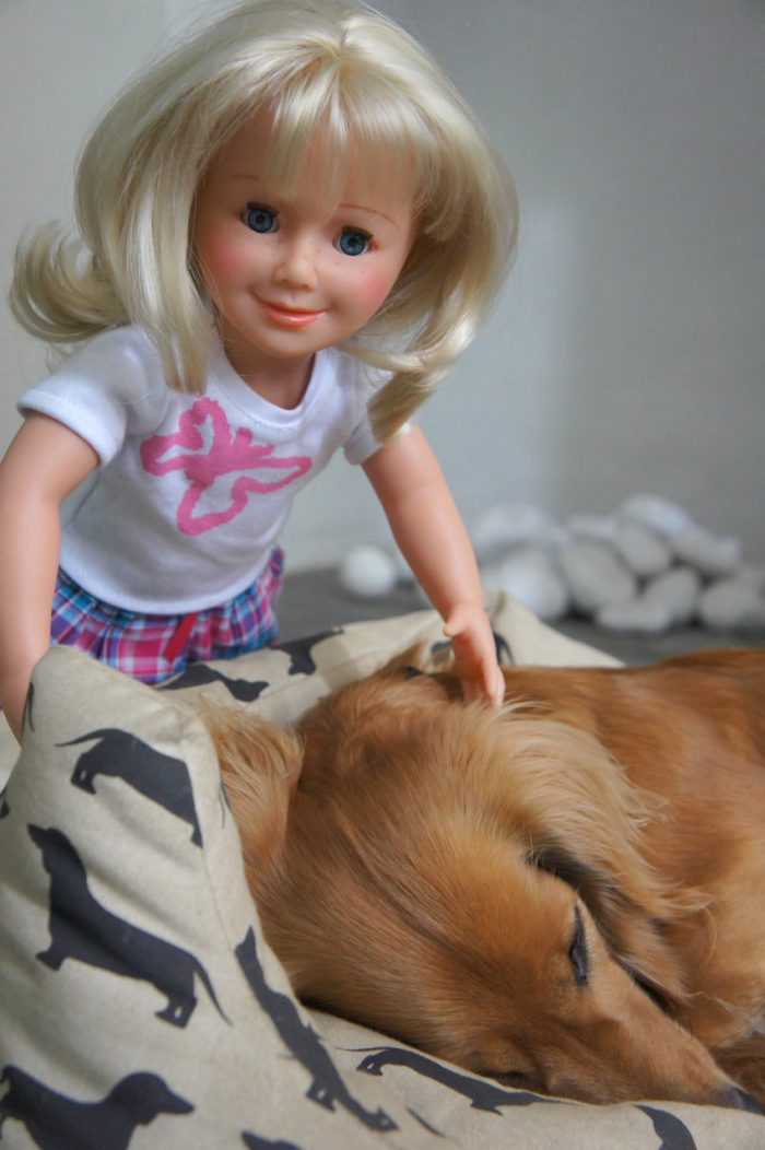 wegirls doll with dog