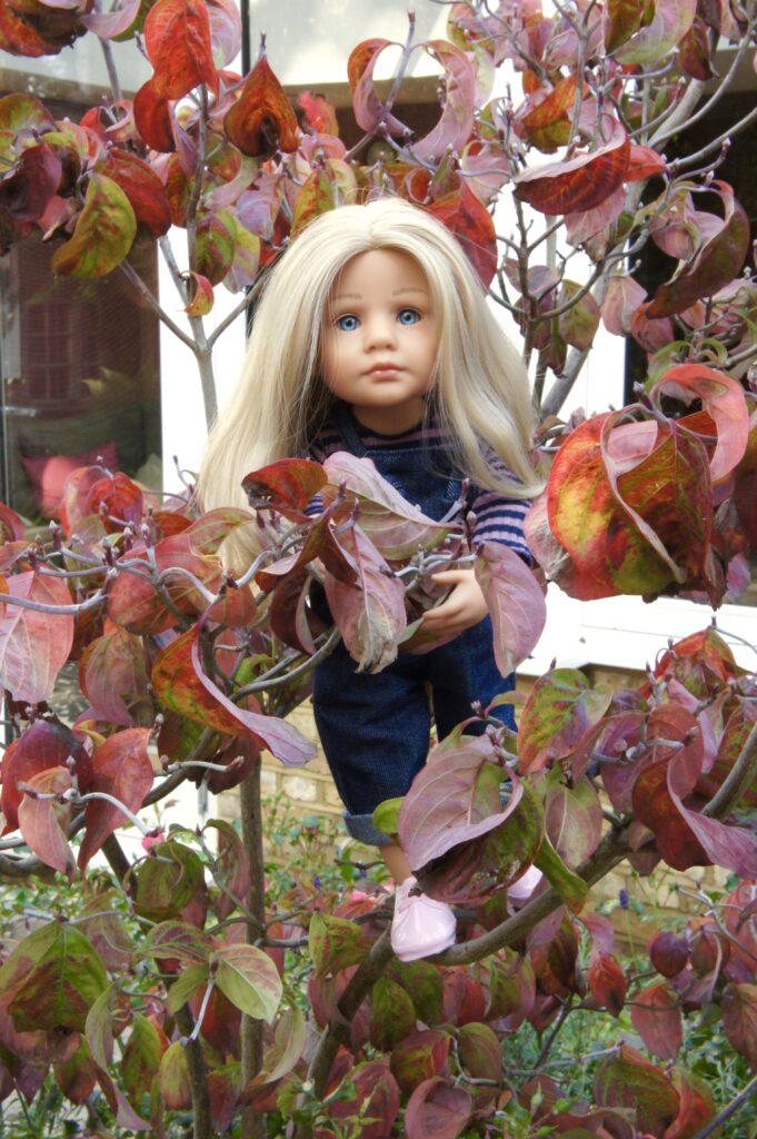 Lotta in the cornus tree